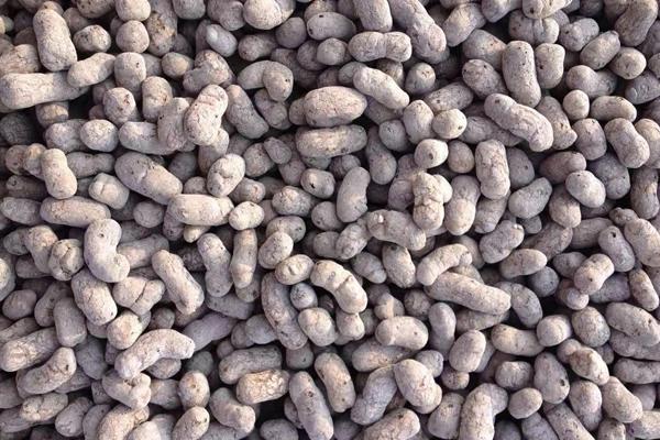 超轻粘土陶粒
